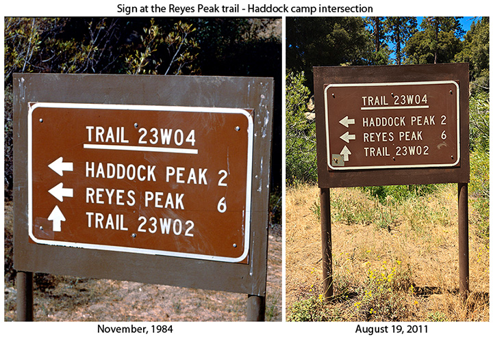 reyes peak trail - haddock camp intersection
