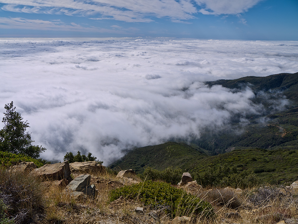 Marine layer from crest, Don Borad trail, 2011